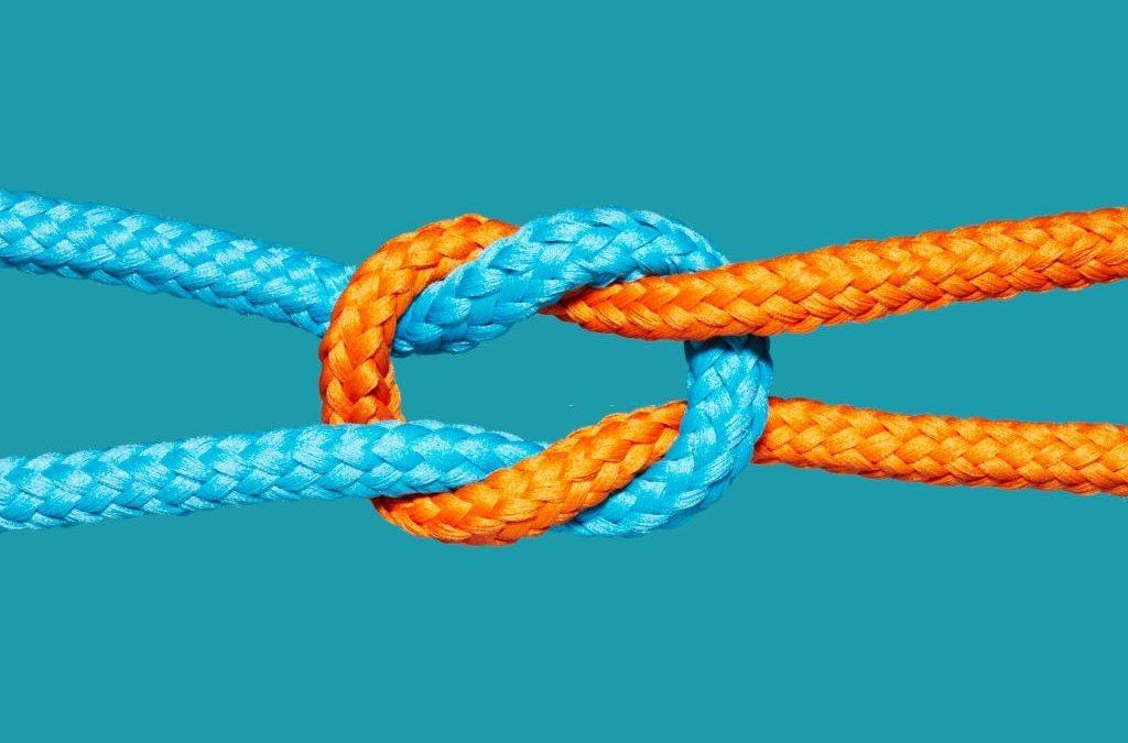 La Complejidad de la Interrelación Familia – Empresa
